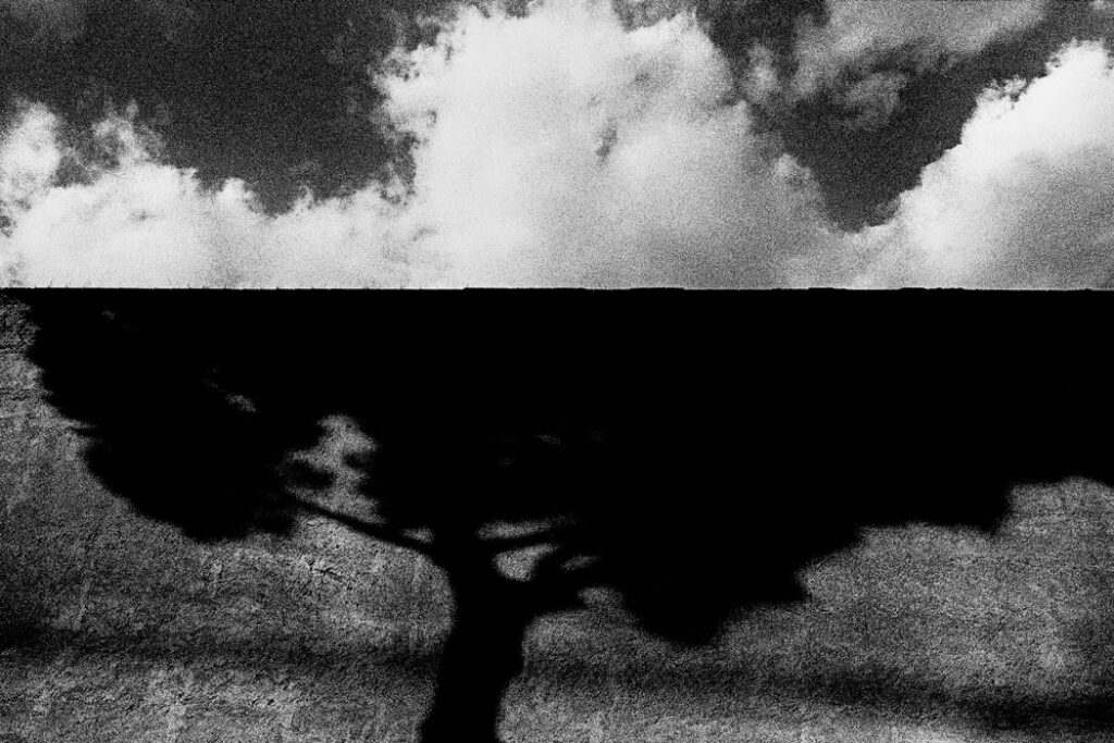 Jehsong Baak, Tree shadow and clouds, Rome 1999, Là ou Ailleurs